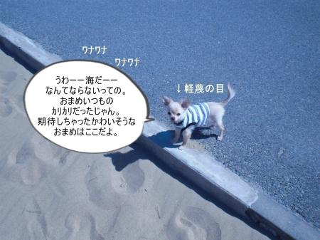 new_CIMG2701.jpg