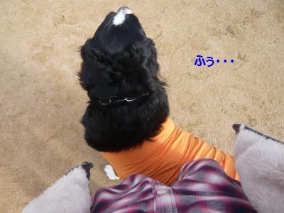 048_convert_20141201144456.jpg