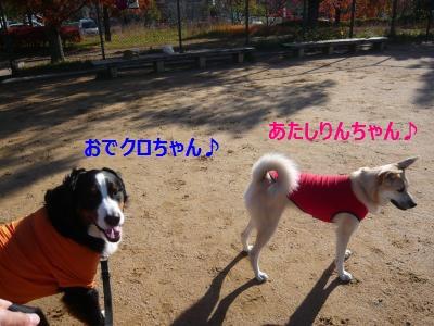 049_convert_20141201144540.jpg