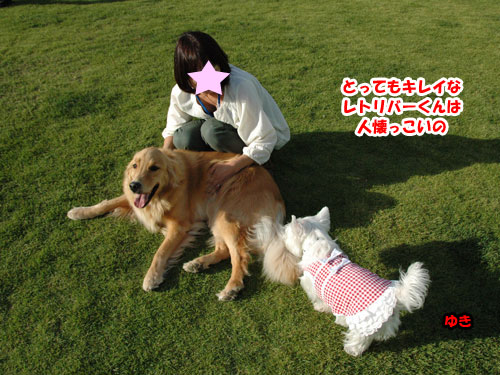 DSC_0525_20111004204212.jpg