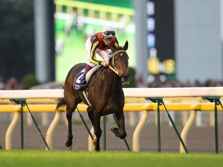 20101101-00000052-spn-horse-view-000.jpg