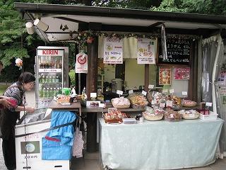 furukawa-garden15.jpg