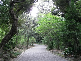 furukawa-garden17.jpg