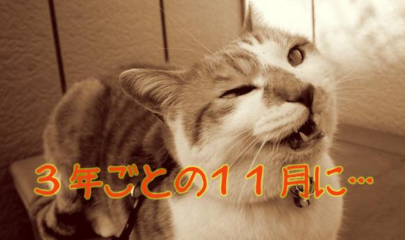 blogtop.jpg