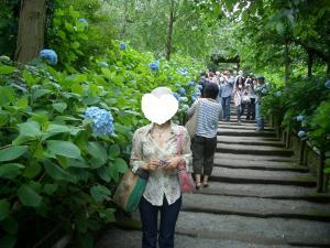 栄子さん明月院2011