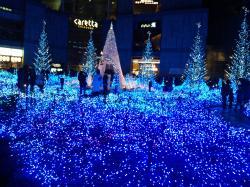 汐留イルミネーション2011