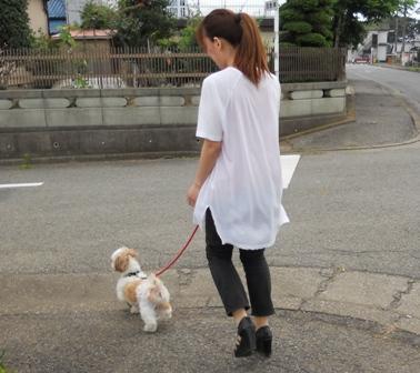 じゅりお見合い散歩