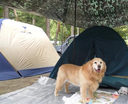 山梨キャンプ場マリア
