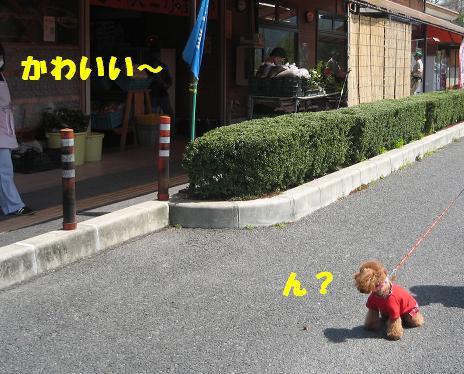 デ・レイケ公園 002 (1)