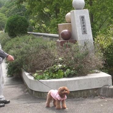 兵庫県立播磨中央公園 011s