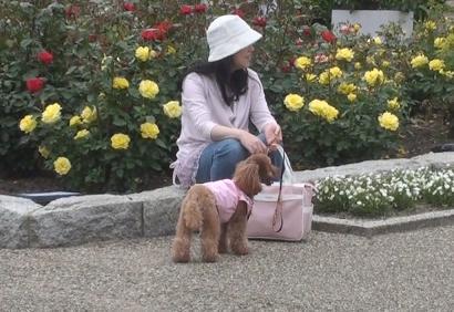 兵庫県立播磨中央公園 032s