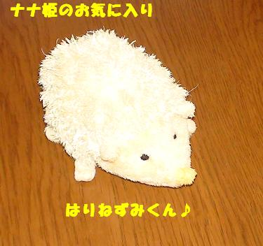 ハリネズミのおもちゃ