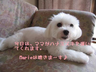 001_convert_20100919140159.jpg
