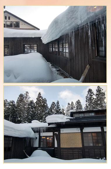 daiyouzyou2013-1-koma.jpg
