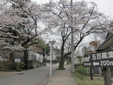 kurehayama2013-4.jpg