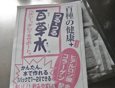 otya-2013-1-iwate.jpg