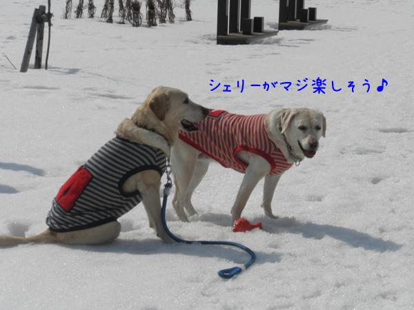 2_20120410213943.jpg