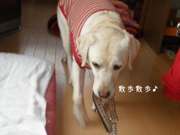 kubiwa_20120410214919.jpg