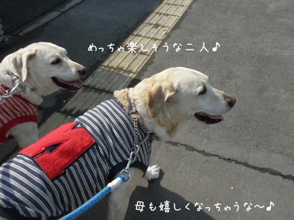 sanpo1_20120410214245.jpg
