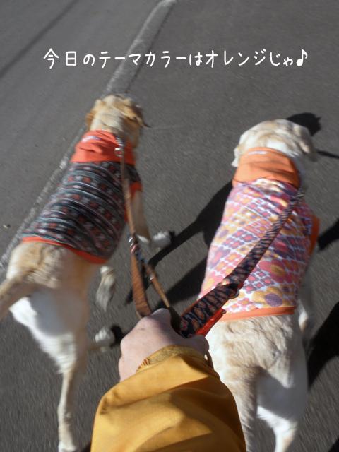 sanpo_20120413002241.jpg