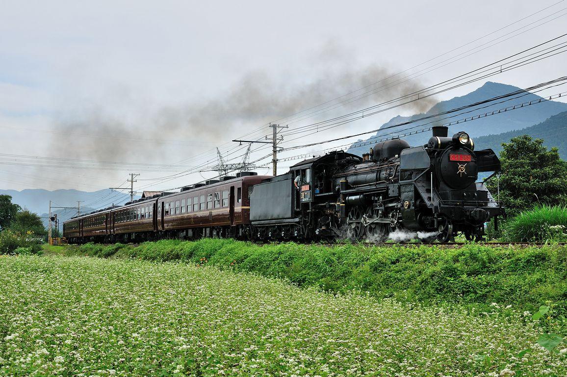 2013.07.06 1236_22(1) 浦山口~武州中川 5001レ C58 363s