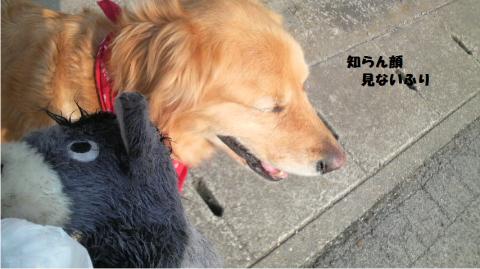 繧檎┌鬘契convert_20110325164736
