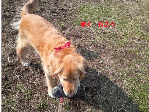 縺晉┌鬘契convert_20110325164551