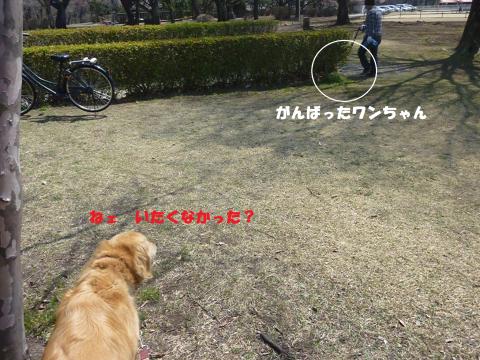 縺醍┌鬘契convert_20110414204030