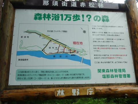 P1010843_convert_20110627195658地図