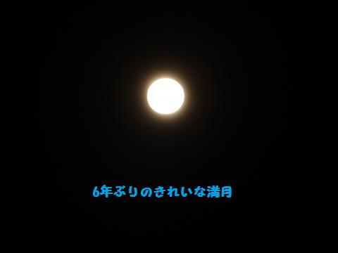 無題きれいな満月