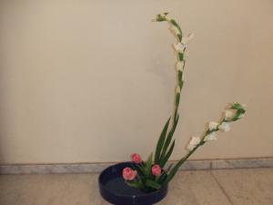 Flower Sep 28-1