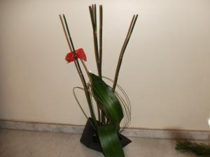 Flower Sep 28-2