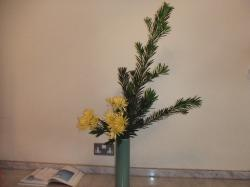 Flower Oct 03-1
