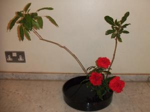 Flower Nov 22-2