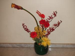 Flower Nov 22-1