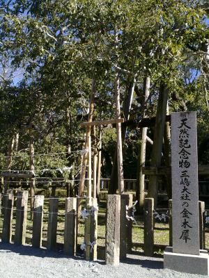 Mishima Shrine 3