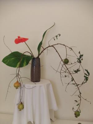Flower Jan 24-1