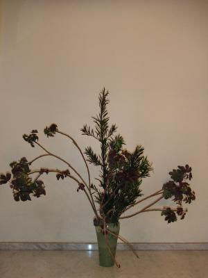 Flower Mar 121-2