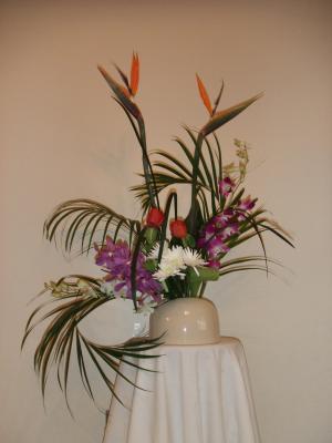 Flower Mar 14-1