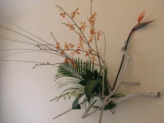 Flower Mar 28-4