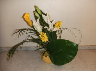 Flower Apr 04 2011-2