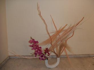 Flower Apr 04 2011-1