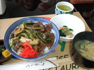 Fujiya Apr 18 2011