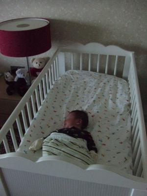 Trey bed