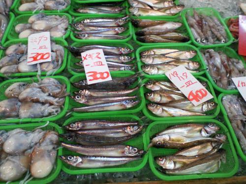 新鮮な魚介類(26.10.9)