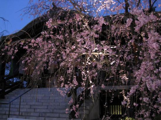 南蔵院10-04-06-07