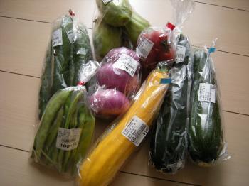 DSCN2289野菜 縮
