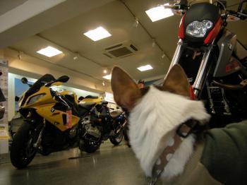 バイク屋5