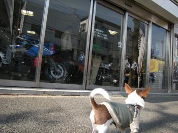 バイク屋2