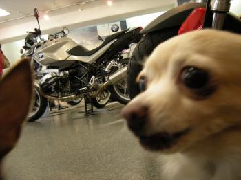 バイク屋3